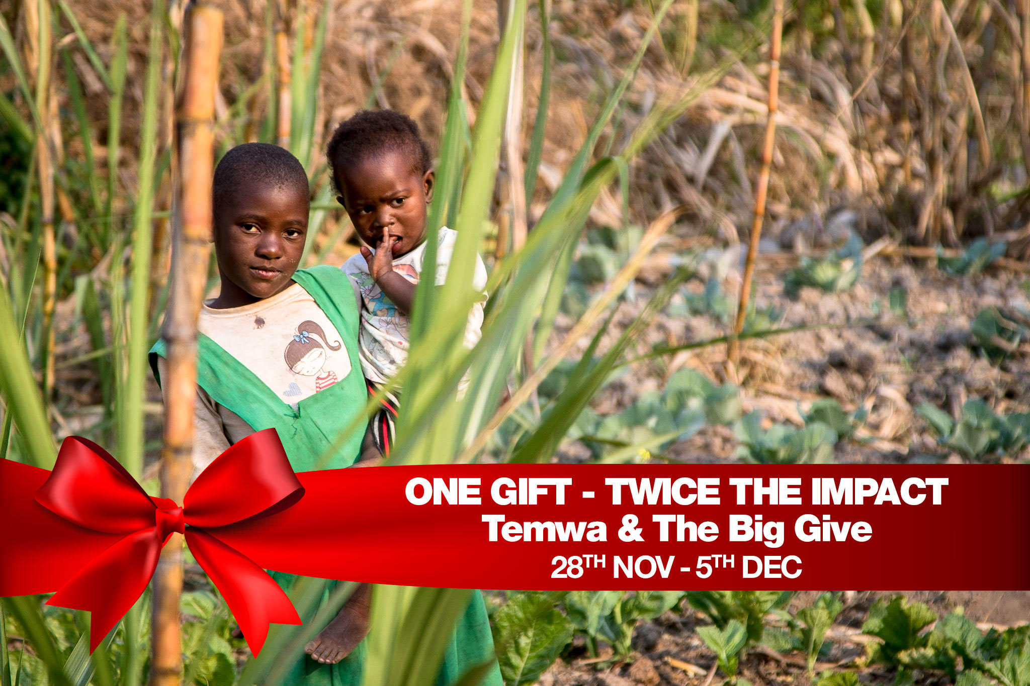 Big Give new