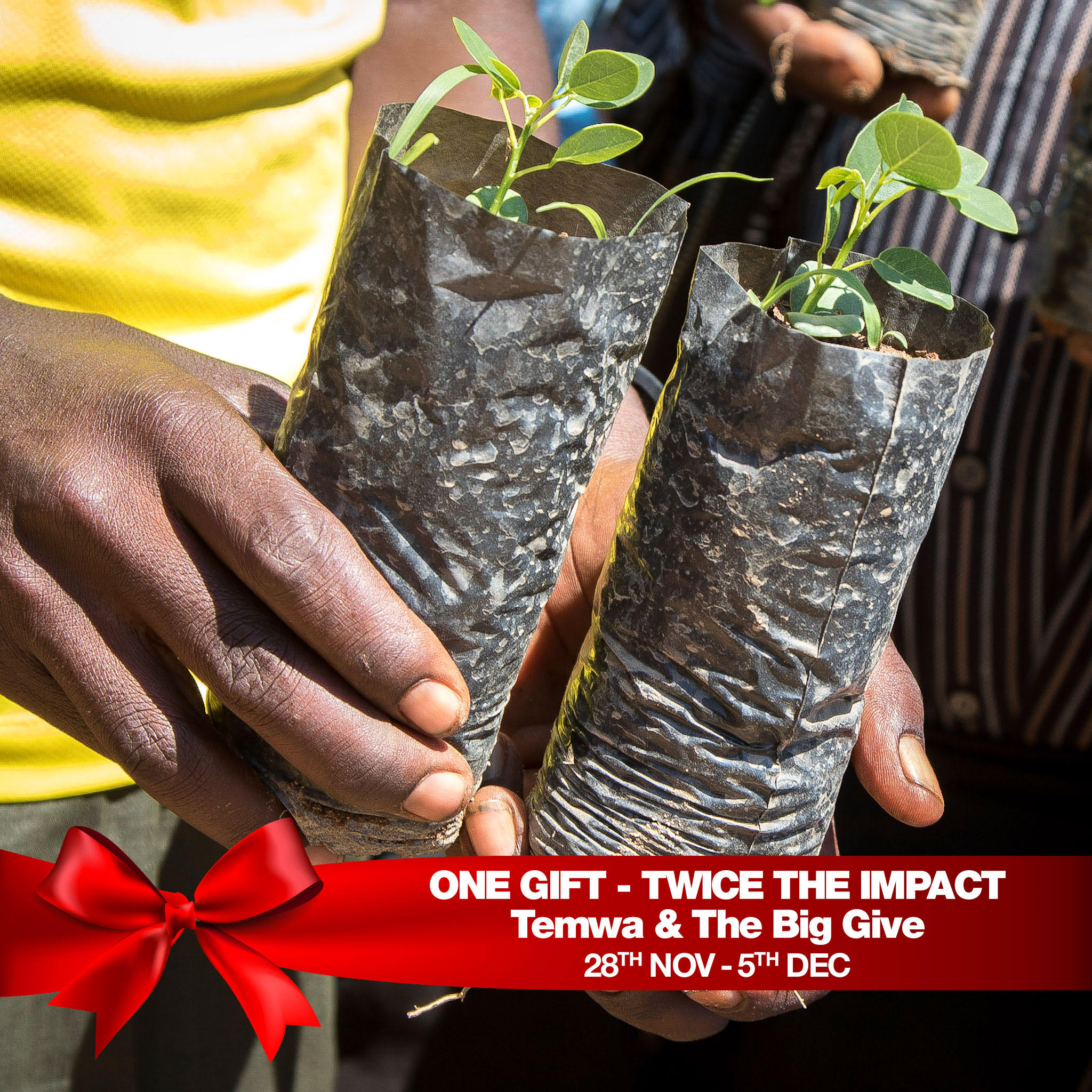 Two for Temwa: One Gift - Twice the Impact - Temwa