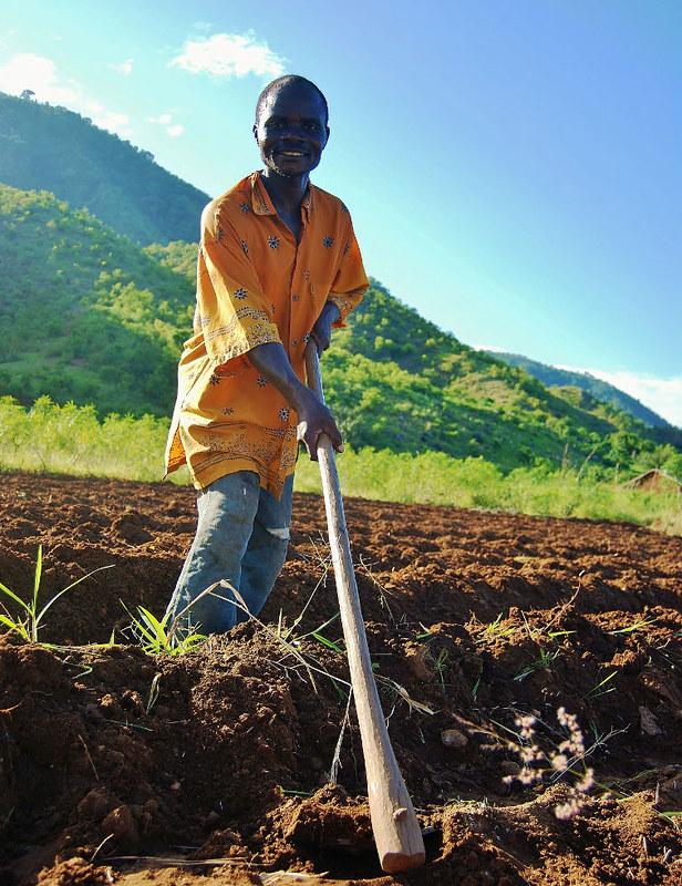 Farming in Nkhata Bay North