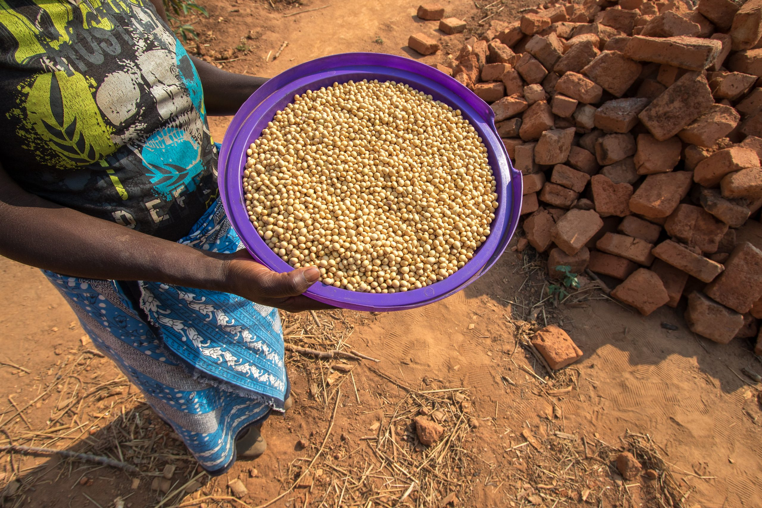 Women's agricultural groups in Malawi